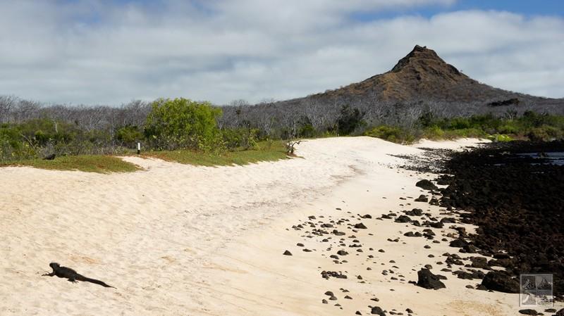une plage sur isabella